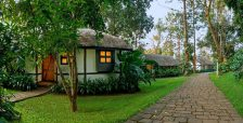 Discover Coorg