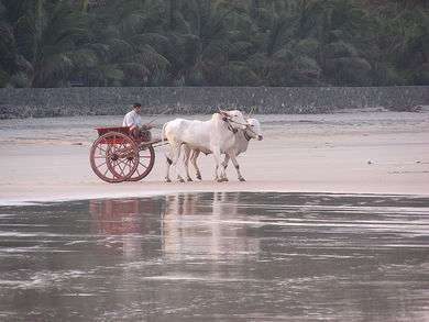 Konkan the Beach Paradise of India