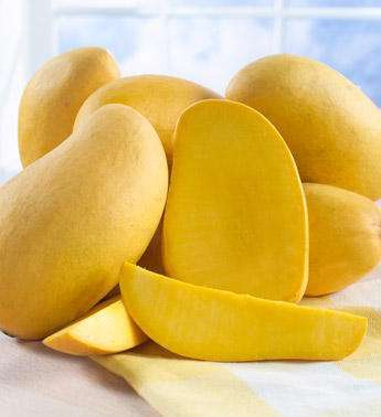 mango is the king of fruits The king of fruits by thomas fuller, poypiti amatatham and natalia v osipova   dec 3 a love letter to a smelly fruit show more playlist up next in travel.
