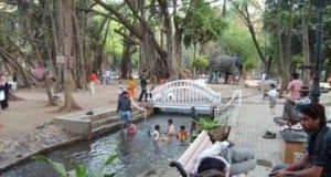 The Best Parks and Gardens in Pune City