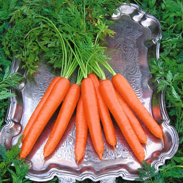 Is Carrot Good For Diabetes Indiamarks