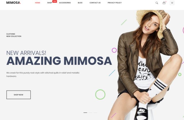 fashion-store-magento themes