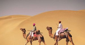 India Camel Safari Bikaner