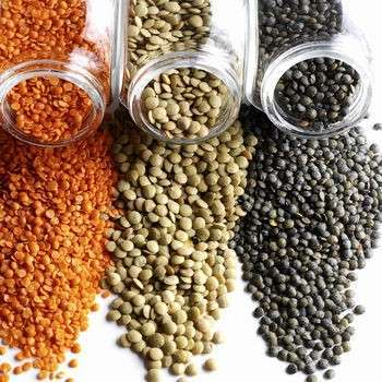 Lentils Dals Pulses And Beans Used In Indian Cooking