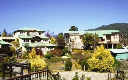 A List Of Most Exotic Vacation Resorts In Binsar Indiamarks