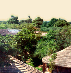 Jai Pushkar Village Resort