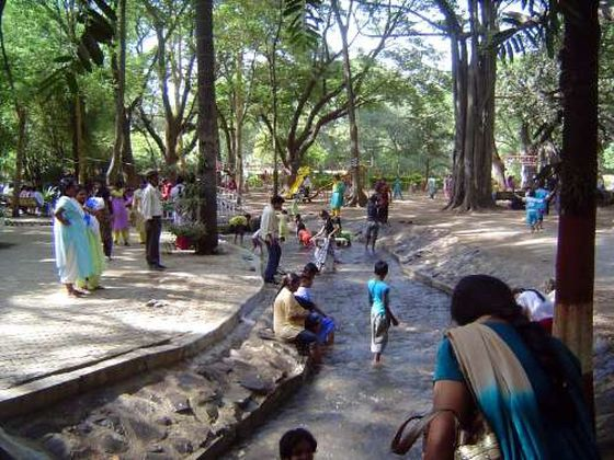 Things to do in Pune with kids, Empress Botanical Garden
