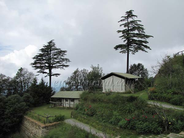 The Binsar Retreat