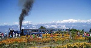 toy trains of india
